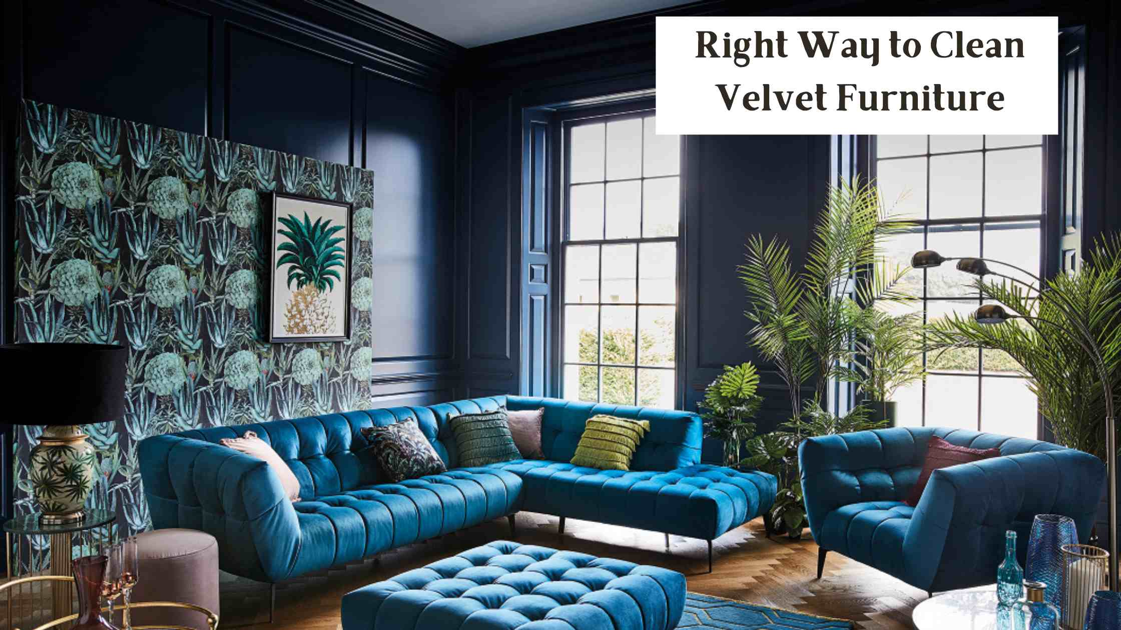 Right Way to Clean Velvet Furniture